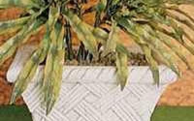 Vaso da giardino in cemento bianco, Vs054