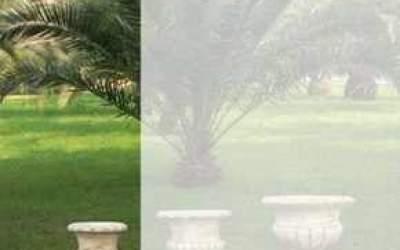 vaso cemento a calice Vs022