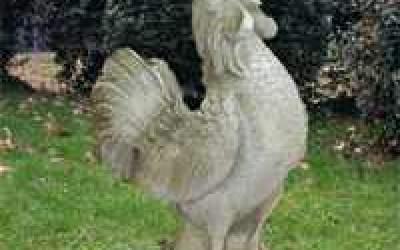 Gallo da giardino in cemento bianco, TA59