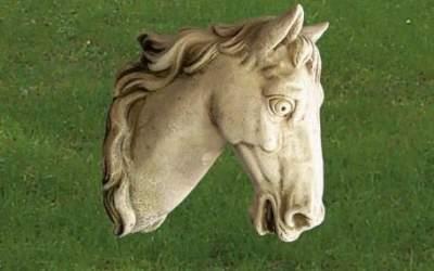 testa di Cavallo in cemento bianco, An30
