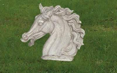 testa di Cavallo in cemento bianco, An31