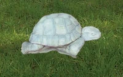 Tartaruga da giardino in cemento bianco, An55