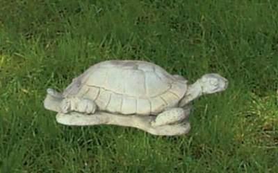 Tartaruga da giardino in cemento bianco, An56