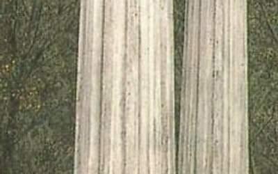colonna cemento da giardino TC17