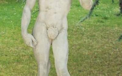 David di Michelangelo statua da giardino, TSA02C