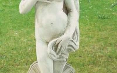 Venere Rinascente, TS03B